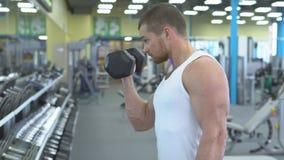 Retrato del hombre atlético fuerte en el entrenamiento del gimnasio el culturista hace un ejercicio en el bíceps con pesas de gim almacen de video