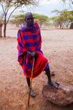 Retrato del hombre de Maasai en Tanzania, África Foto de archivo