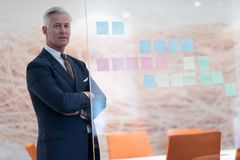 Retrato del hombre de negocios mayor hermoso en la oficina moderna Fotografía de archivo libre de regalías