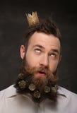Retrato del hombre del Año Nuevo, barba larga con los conos de la Navidad Fotos de archivo