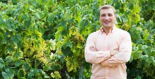 Retrato del hombre feliz cerca de las uvas en viñedo Foto de archivo