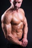 Retrato del hombre muscular joven atractivo que se coloca sobre gris Imagen de archivo