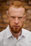 Retrato del hombre rojo joven serio del pelo con la barba Fotos de archivo libres de regalías