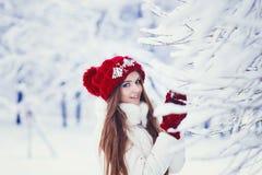 Retrato del invierno de la mujer imagen de archivo