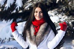 Retrato del invierno de la mujer morena hermosa joven al aire libre Imagen de archivo libre de regalías