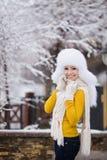 Retrato del invierno de la mujer sonriente hermosa con los copos de nieve en las pieles blancas Imagen de archivo libre de regalías