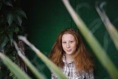 Retrato del jengibre de la muchacha de la palmera sin embargo Imagen de archivo