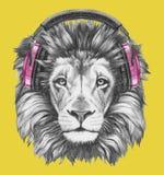 Retrato del león con los auriculares Imagen de archivo libre de regalías