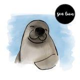 Retrato del león marino de la acuarela, ejemplo del vector Foto de archivo libre de regalías