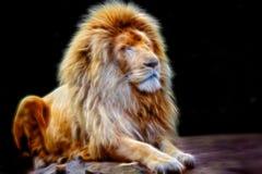 Retrato del león que brilla intensamente Imágenes de archivo libres de regalías
