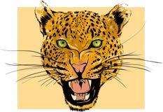 Retrato del leopardo Cabeza salvaje enojada del gato grande Cara linda del depredador agresivo africano con los dientes descubier stock de ilustración