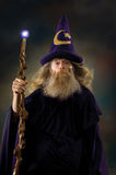 Retrato del mago Imagen de archivo libre de regalías