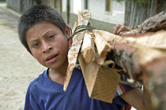 Retrato del muchacho del Latino con leña en hombro Imagen de archivo libre de regalías