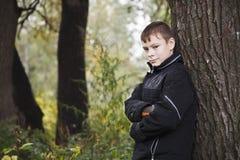 Retrato del muchacho en un árbol en la madera del otoño Fotografía de archivo