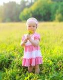 Retrato del niño con las flores en la hierba en verano Imagen de archivo libre de regalías