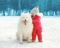 Retrato del niño feliz con el perro blanco del samoyedo en invierno Fotografía de archivo libre de regalías