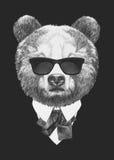 Retrato del oso en traje Imagen de archivo