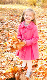 Retrato del otoño de la niña sonriente linda con las hojas de arce Fotografía de archivo