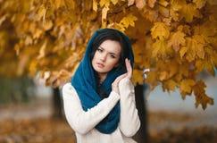Retrato del otoño de una muchacha hermosa fotografía de archivo
