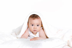 Retrato del pequeño bebé feliz desnudo que se sienta en el piso aislado en el fondo blanco. Retrato del estudio. Imagen de archivo libre de regalías