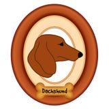 Retrato del perro basset, marco de madera, hueso de perro Imágenes de archivo libres de regalías