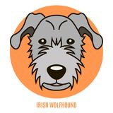 Retrato del perro lobo de Irirsh Ejemplo del vector en el estilo de la Florida Fotos de archivo libres de regalías