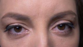 Retrato del primer de la cara femenina caucásica atractiva adulta con el maquillaje hermoso del ojo que mira la cámara con el fon almacen de video