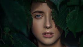 Retrato del primer de la mujer joven atractiva Cara que mira a través de las hojas imágenes de archivo libres de regalías