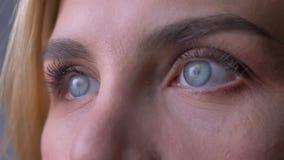 Retrato del primer de los ojos azules femeninos que miran en la distancia almacen de video