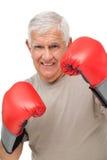 Retrato del primer de un boxeador mayor resuelto imágenes de archivo libres de regalías