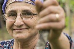 Retrato del primer de una mujer musulmán mayor con la lente en Gard imagenes de archivo