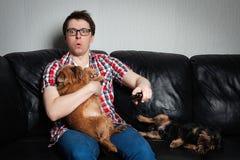 Retrato del primer, hombre joven en la camisa roja, sentándose en el sofá de cuero negro con dos perros, TV de observación, soste fotos de archivo libres de regalías