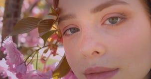 Retrato del primer del modelo bonito del jengibre que mira pacífico y bonito en cámara en fondo floral rosado del parque almacen de metraje de vídeo