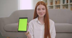 Retrato del primer del pelirrojo bonito joven femenino usando la tableta y mostrar a croma verde la pantalla dominante a sentarse almacen de video