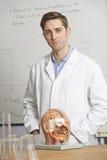 Retrato del profesor de biología In Classroom Foto de archivo