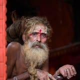 Retrato del sadhu de Shaiva, hombre santo en el templo de Pashupatinath, Katmandu nepal Imagen de archivo