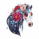 Retrato del vector del caballo de la acuarela libre illustration