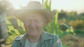Retrato del viejo granjero en un campo que sonríe y que habla en la cámara 4K