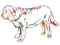 Retrato derecho decorativo colorido del vec español del mastín del perro stock de ilustración