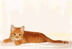 Retrato desenhado mão do gatinho do gengibre Fotos de Stock