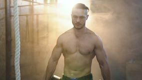 Retrato disparado do homem atrativo muscular que anda com a placa do peso através do gym vídeos de arquivo