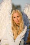 Retrato do anjo Imagens de Stock Royalty Free