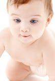 Retrato do bebé de rastejamento Imagens de Stock Royalty Free