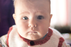 Retrato do bebê Imagem de Stock