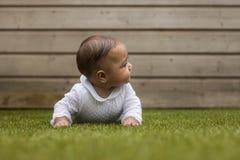 Retrato do bebê idoso de seis meses que encontra-se na grama no Imagens de Stock Royalty Free