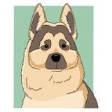 Retrato do cão-pastor alemão no quadrado verde no fundo branco Ilustração do vetor da cabeça do cachorrinho da tração da mão boa  ilustração stock