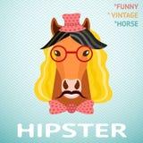 Retrato do cavalo engraçado do moderno do vintage com Fotos de Stock