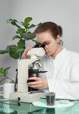 Retrato do cientista fêmea que olha sob o microscópio Fotografia de Stock Royalty Free