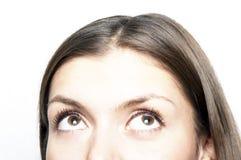 Retrato do Close-up Imagem de Stock Royalty Free