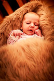 retrato do close up da cara de sorriso do bebê recém-nascido Imagens de Stock